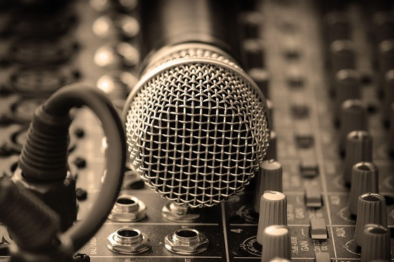 Microphone 29