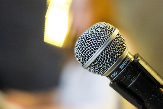 Microphone 30